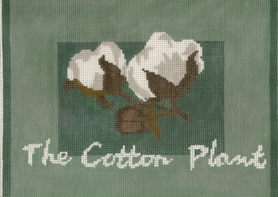 L31-The Cotton Plant
